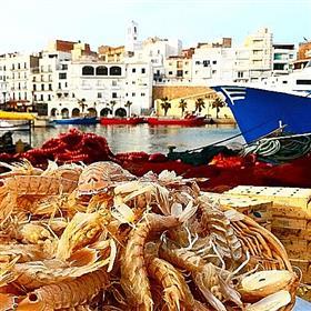 Gastronomische Tage der Fischversteigerungshalle von l'Ametlla de Mar