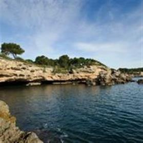 Cova del Llop Marí