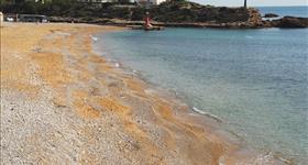 Пляж Estany Gras