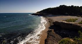 Playa de Port Olivet