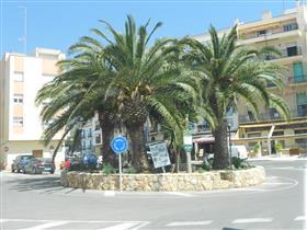 Plaça del Canó