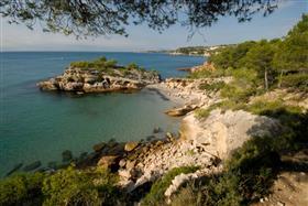 Островной пляж(Playa de l'Illot)