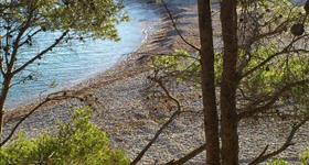 9. Espai d'Interès Natural de la Platja de Santes Creus (Ruta GR-92)