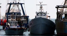 confrérie des pêcheurs