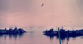 A photo by @arraiz