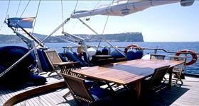 Crucero turístico por la mar del Delta - Green Gullet