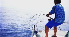 Départs pêche récréative (thon géant pêche à la traîne , pêche à la dandinette et filature ) - Top Fisher