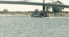Cruise round the Ebro estuary - Multiactivitat a les Terres de l'Ebre
