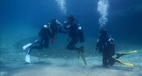 Curs de busseig Open Water Diver SSI/ACUC - Plàncton Diving