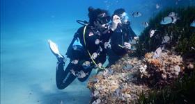Buceo con oceanógrafas - Plàncton Diving