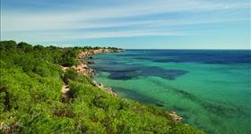 5. Acantilados costeros ( Ruta de la Natura costa)