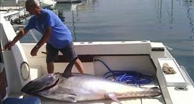 Journée de pêche - Mementos Serveis Marítims